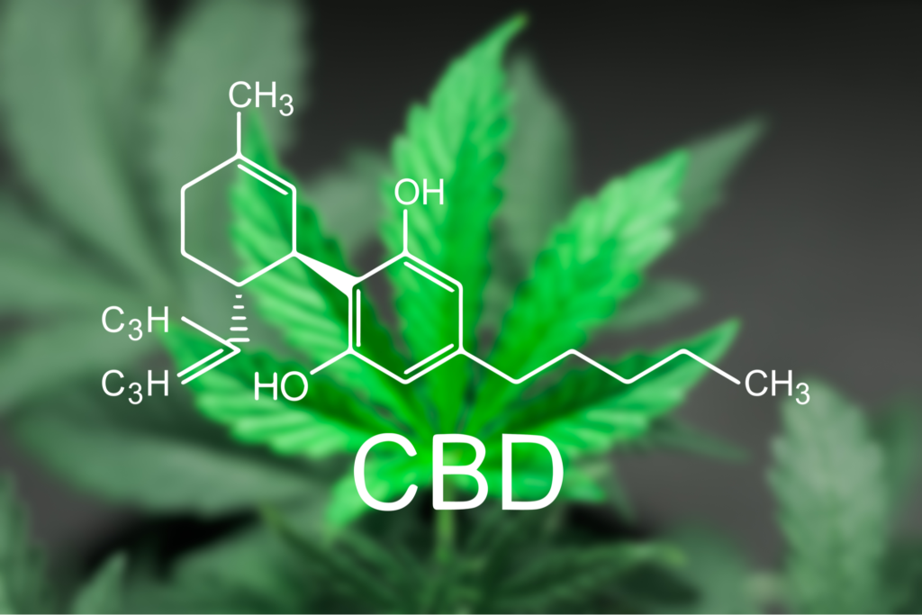 Know the Difference Between CBD and CBDA